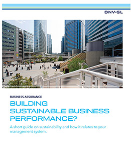 Building sustainable business performance