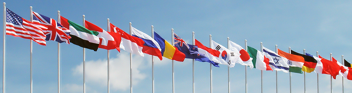 Flags_1134x300