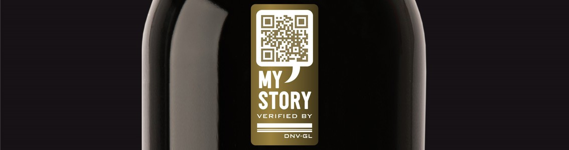 DNV GL My Story